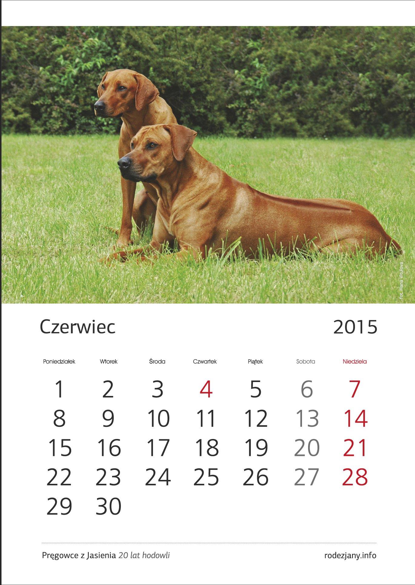 Kalendarz wielostronicowy A3 spiralowany