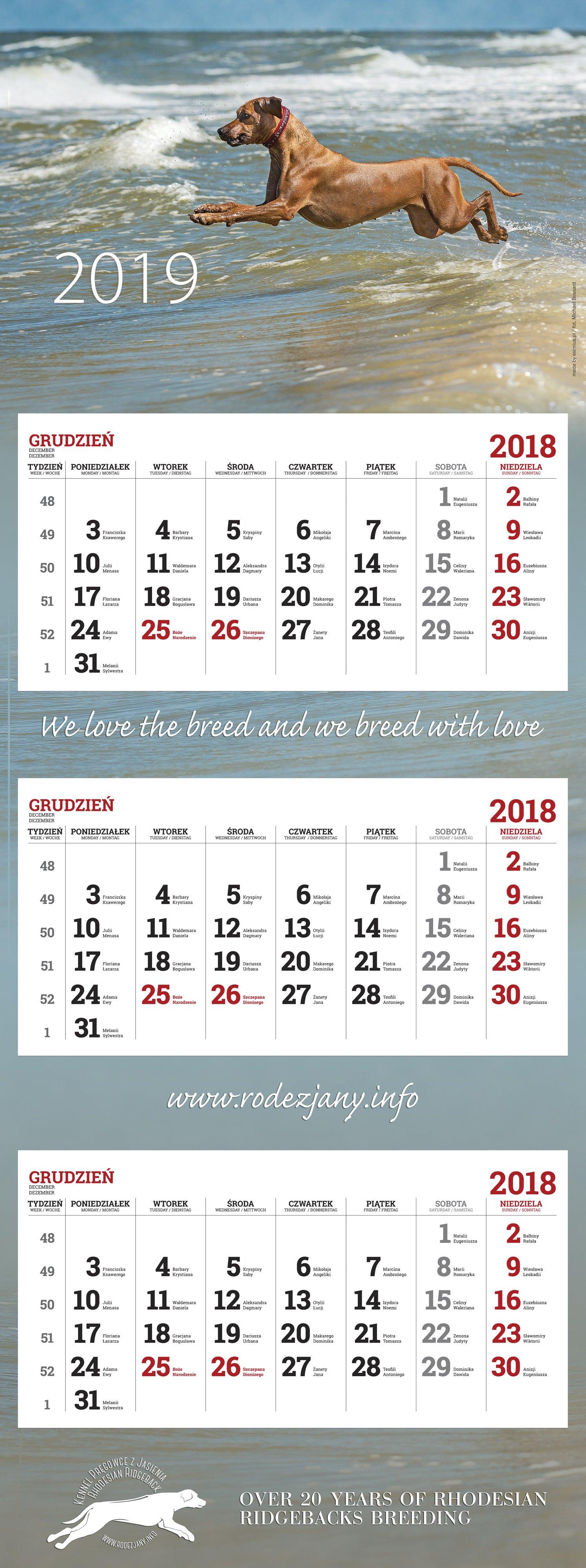 kalendarz-trojdzielny-nascienny-maxi-kalendarze-2018-maxi