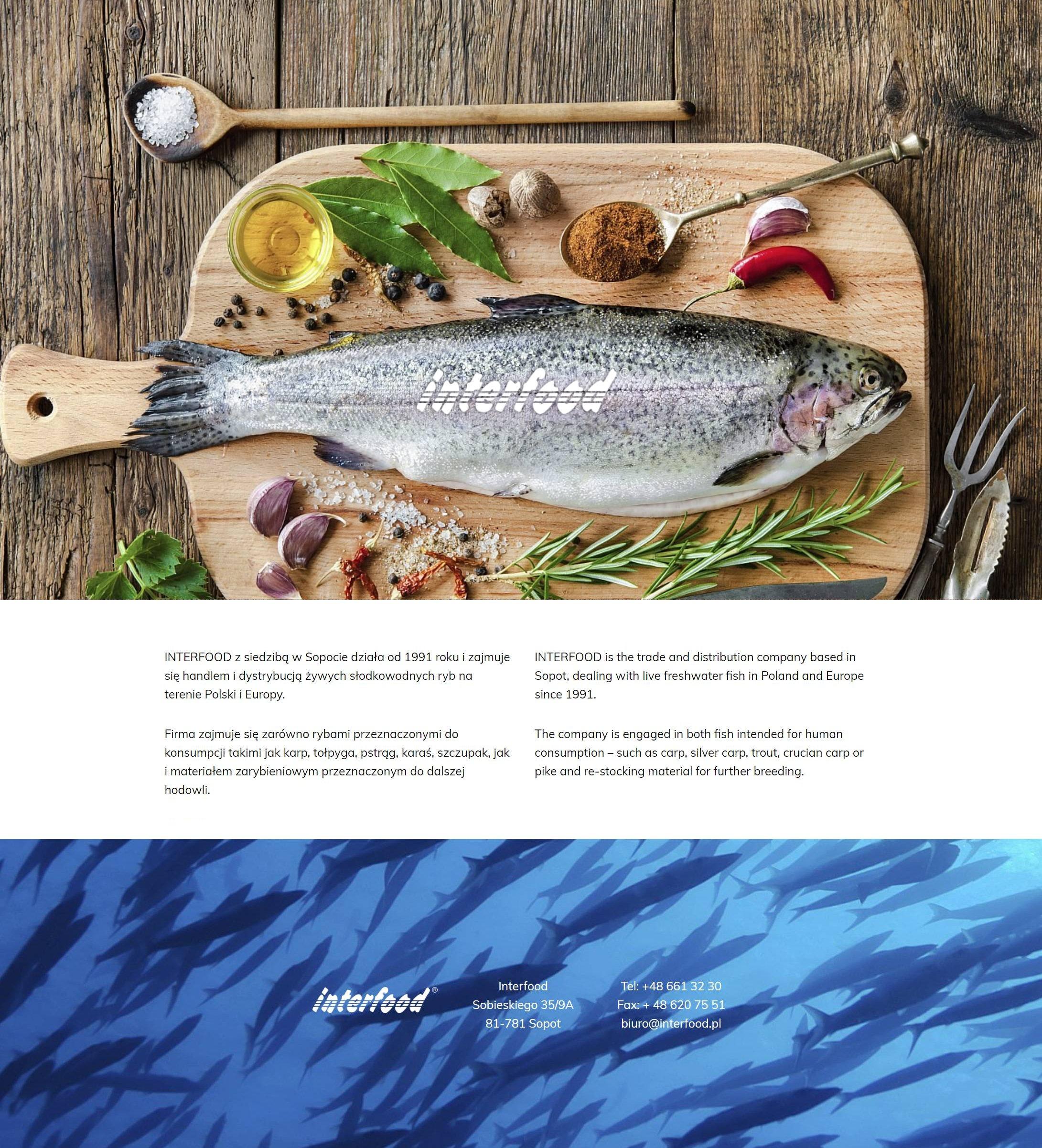 projektowanie-budowa-stron-internetowych-wordpress-responsywne-strony-www_firma-handlowa